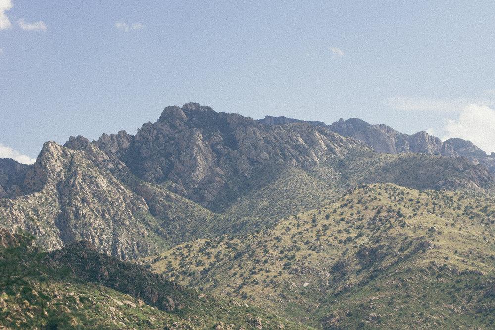 Catalina Hike-10.jpg