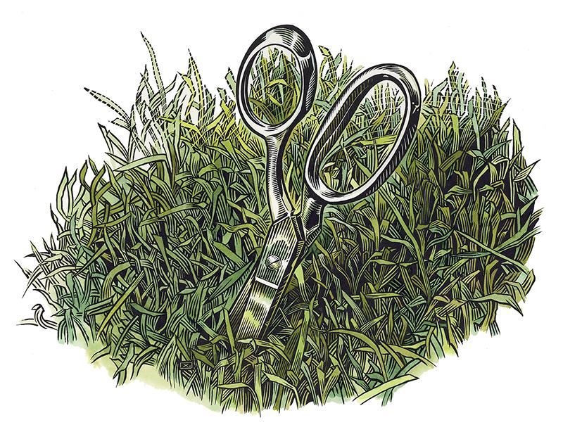 rx_scissors.jpg