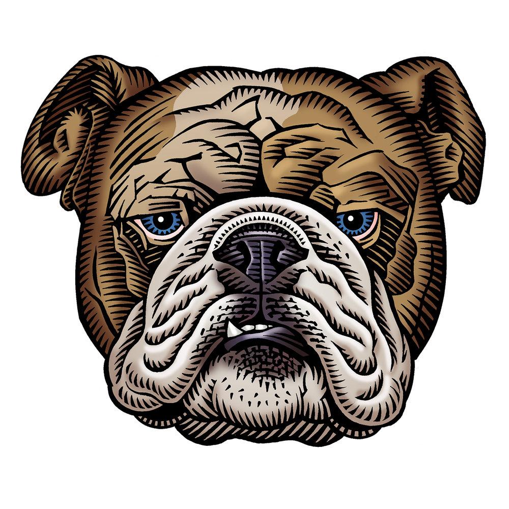 RX_Bulldog.jpg