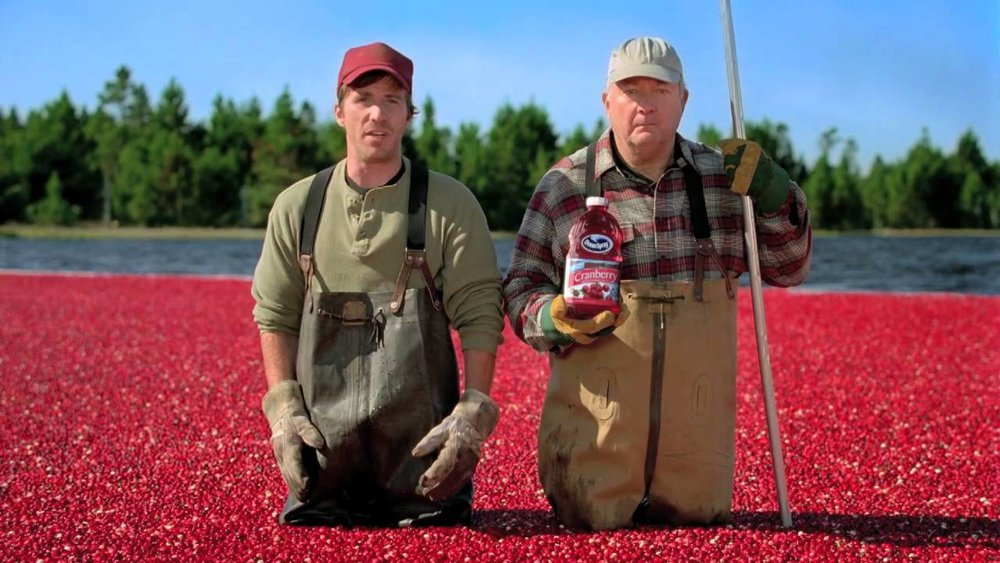 (And no, these two iconic dudes are not real cranberry farmers. They are Justin Hagan and Henry Strozier, two actors, though the commercials are shot in a working cranberry bog in Massachusetts.)