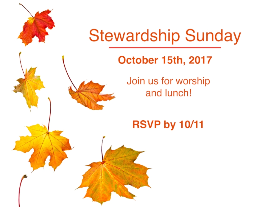 stewardship sunday.jpeg