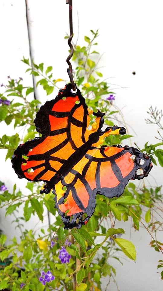 butterfly003.jpg