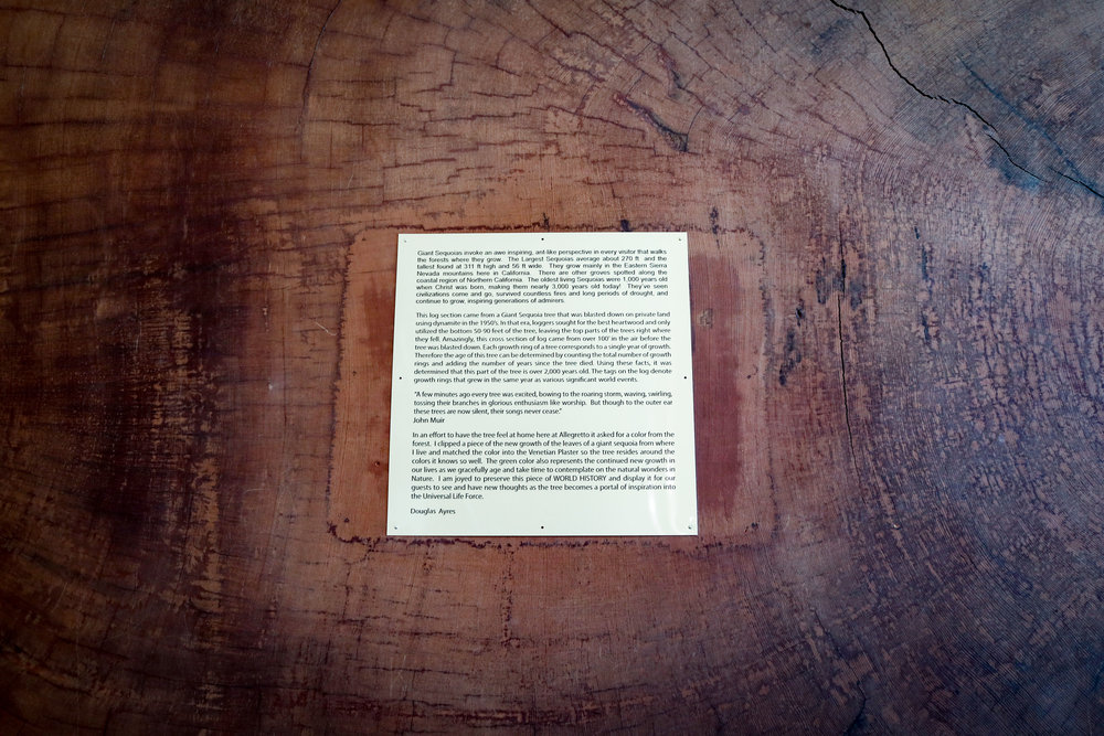 HISTORY OF THE SEQUOIA.jpg