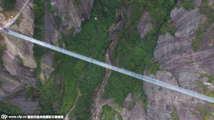 Glass-Suspension-Bridge-Overhead.jpg