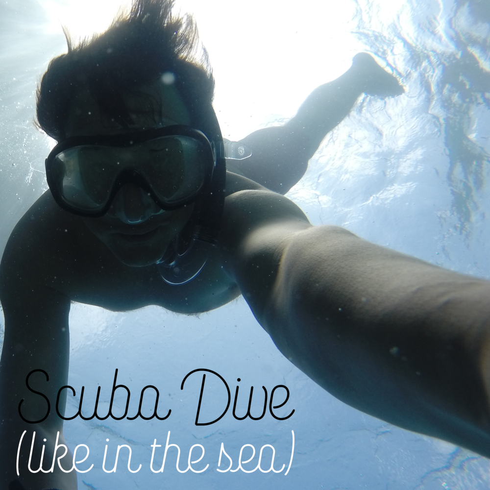 Scuba Dive (like, in the sea)