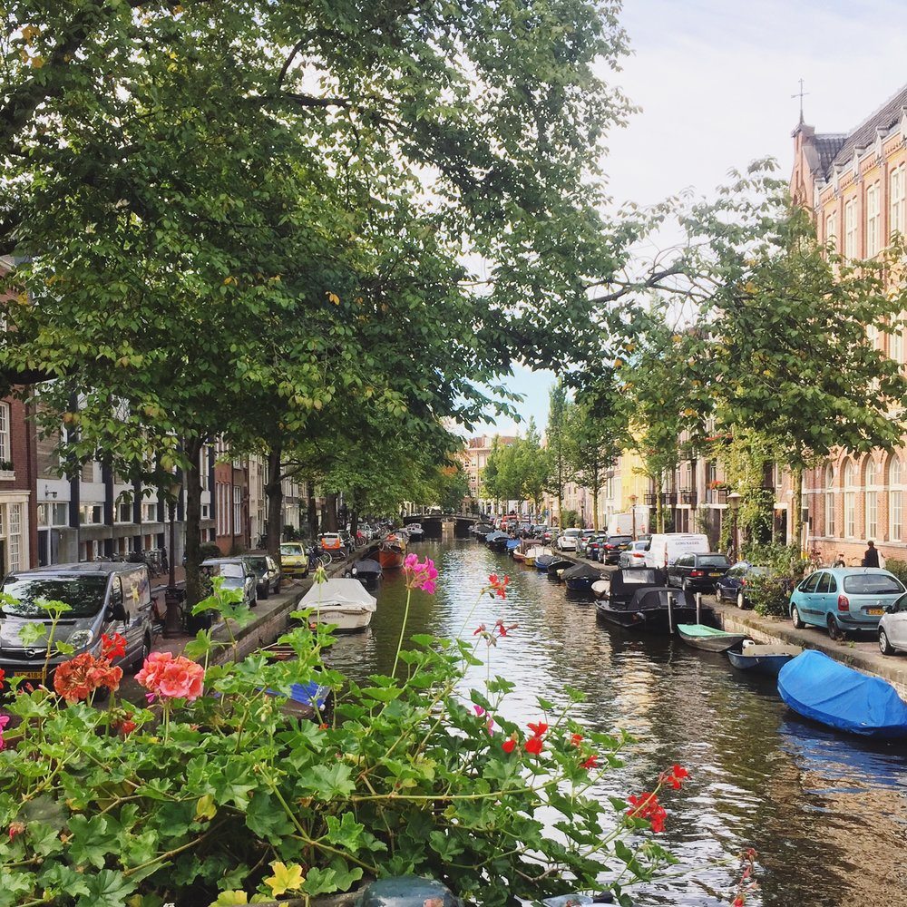 View from a stroll along Amsterdam's canals