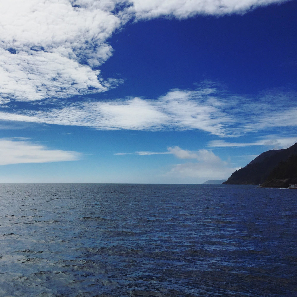 View of Tasman Sea from Milford Sound
