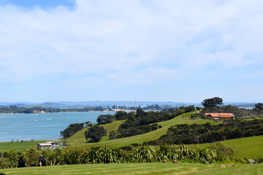 Cable Bay Vineyard Auckland