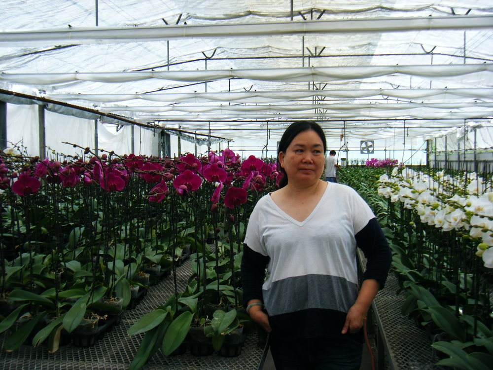 Lunfus Co-founder, Sue, standing proudly among our final products at our Welland, ON greenhouse facility