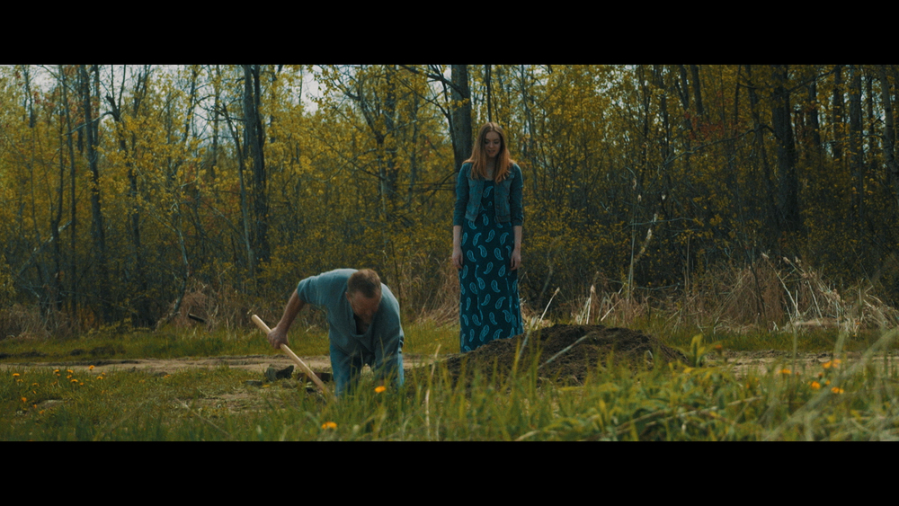 On a beautiful spring day, an inquisitive Young woman comes upon a man digging a hole for mysterious reasons.     TOP 5 FILM