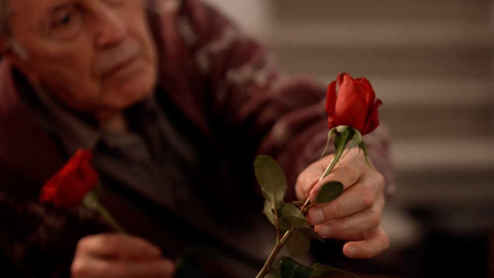 "Ahmed Alaa Hafez Andrew's Rose   An old man misses his deceased wife. He misses her even more after scrolling through her photos on Facebook and decides to send her a message. An unexplained connection happens when someone starts replying to his message from the ""other side""."