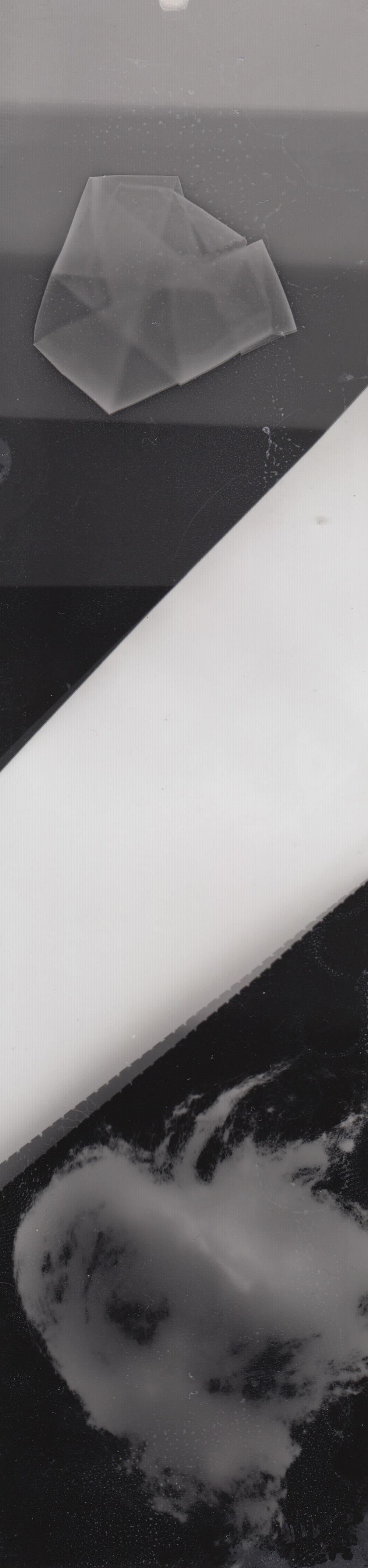 Test Strip - Photogram