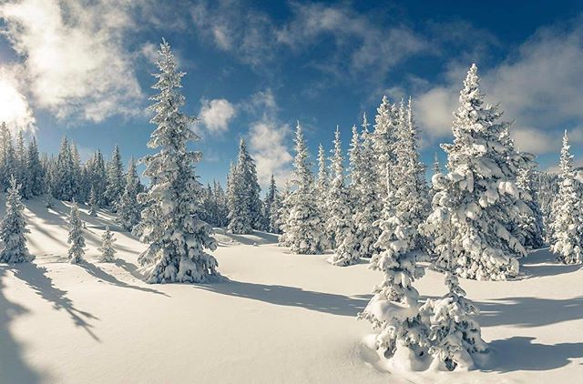 Winters for real, and it's really pretty! PC: @gasper43