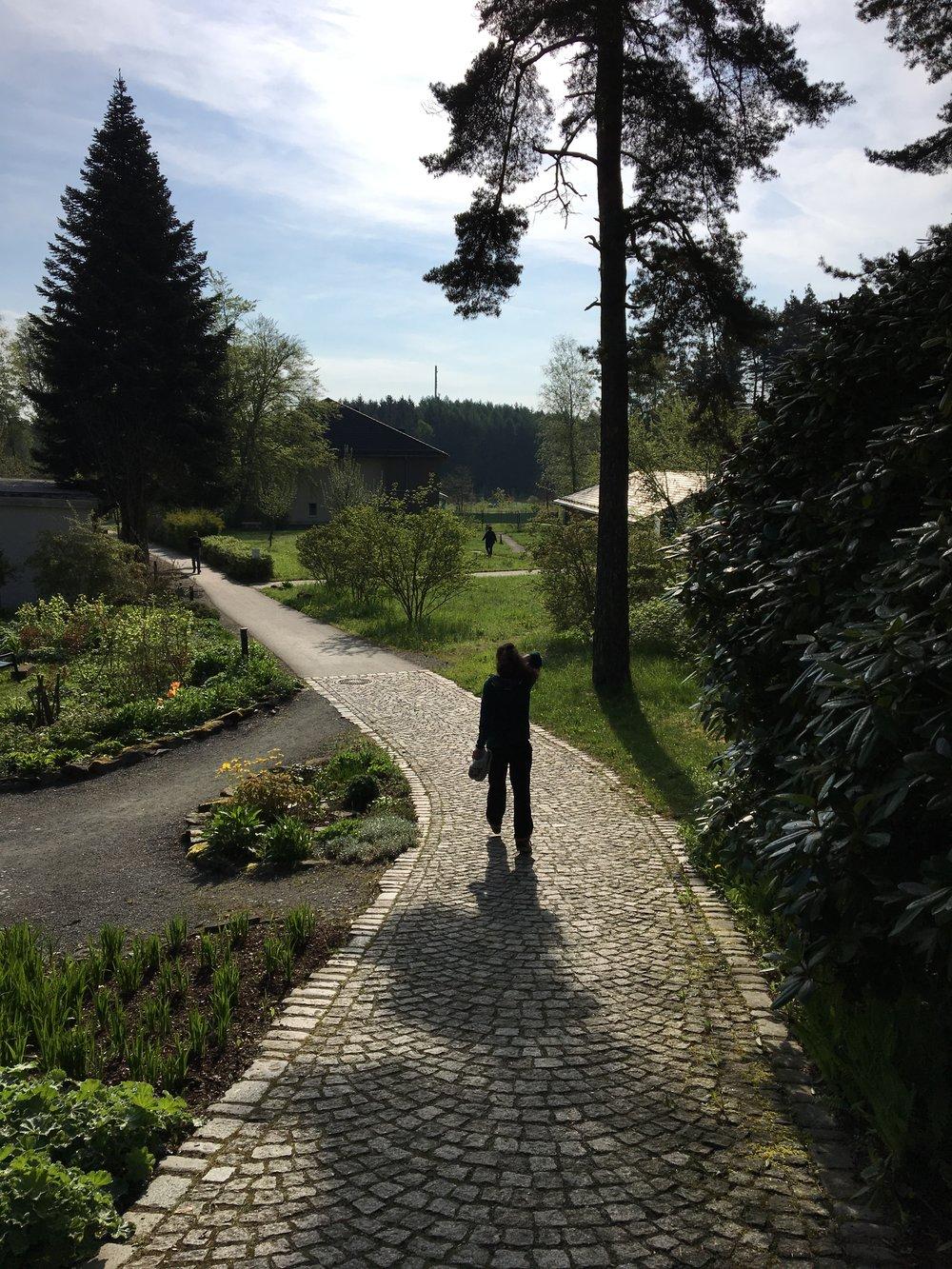 De weg naar de meditatiezaal