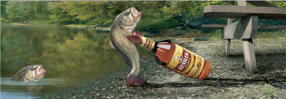 A3 Fish (300).jpg