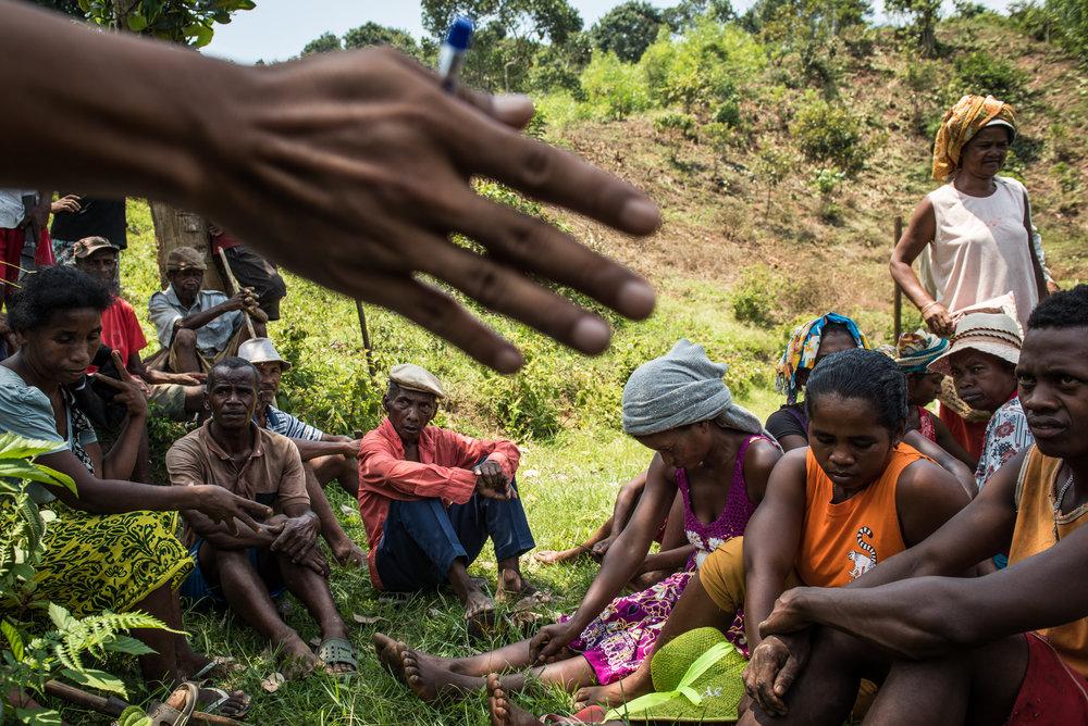 Madagascar Forest - Web-14.jpg