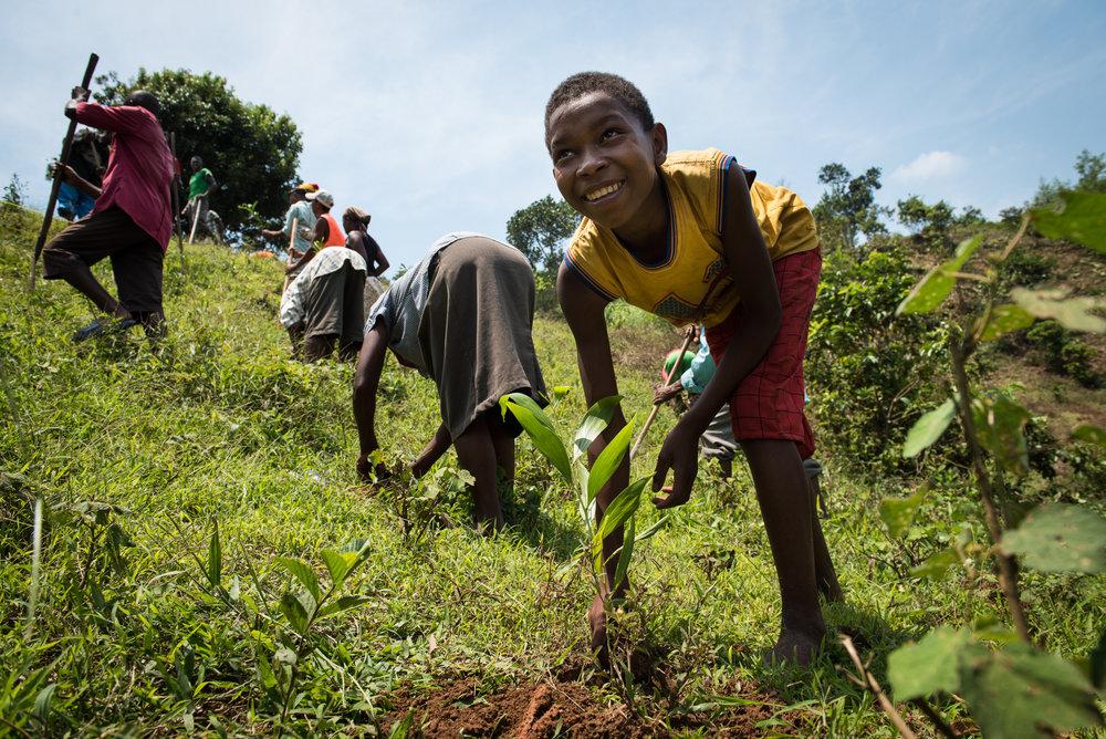 Madagascar Forest - Web-17.jpg