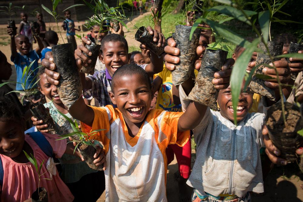 Madagascar Forest - Web-2-2.jpg