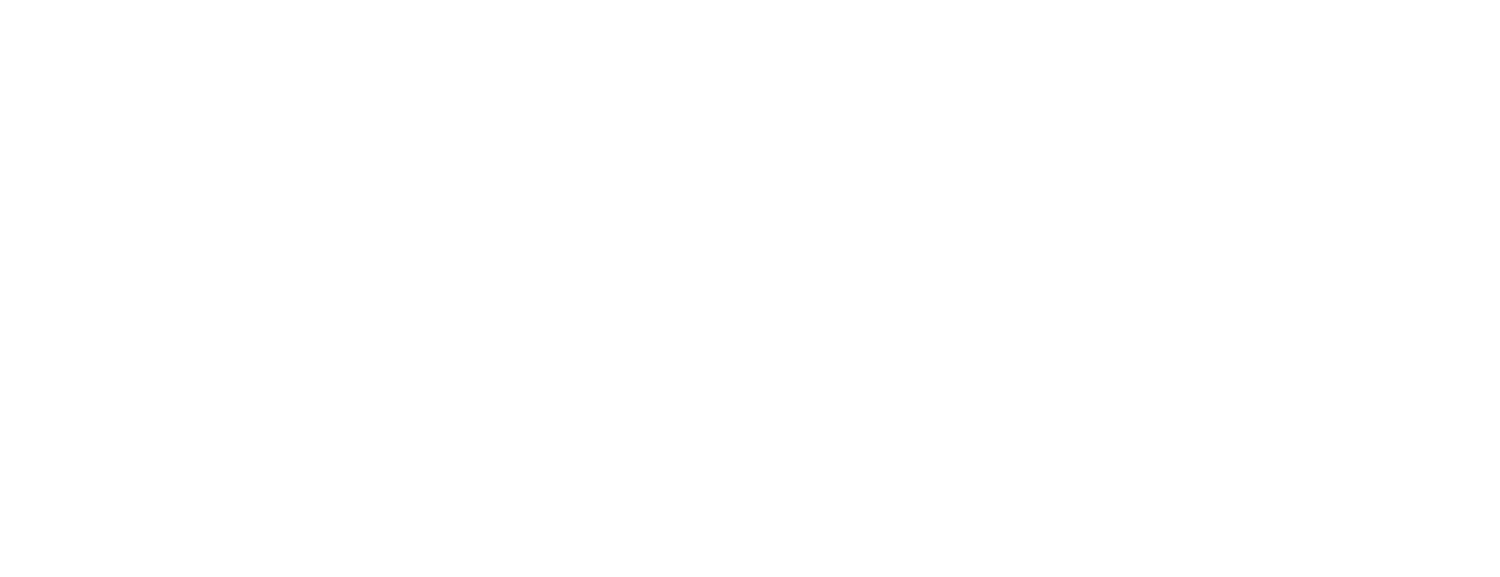 Branch Development Partners