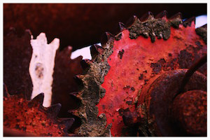 The Cogs - Photograph by Pippa-la Doube. Prints for sale www.pippaladoube.com (Please credit me and link to my website if you use this image)