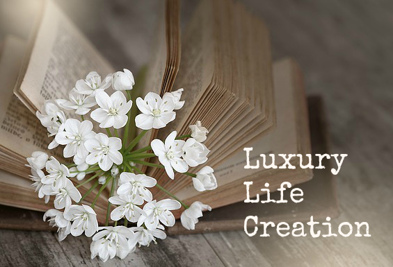 Vision Board Luxury Life Creation Pippa-la Doube Creativity Expression