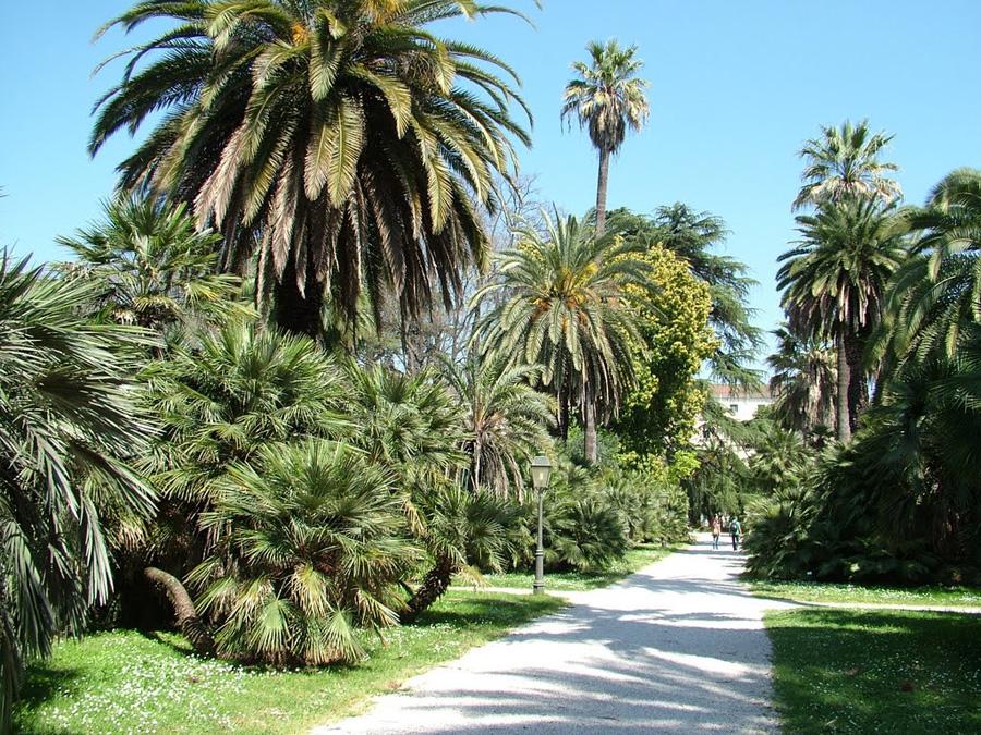 4-Location-Alchimia-Suite-casa-vacanze-Trastevere.jpg