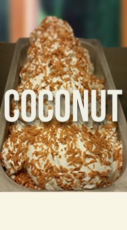 COCONUT GELATO    This intensely flavored gelato will satisfy any coconut lover.