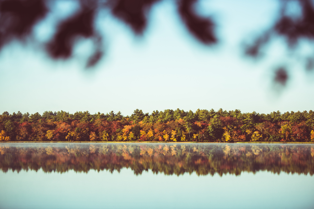 Lakeside Fall Foliage in Rhode Island
