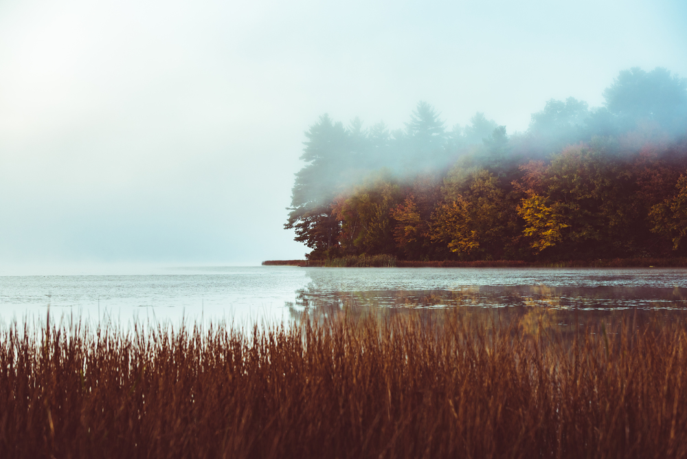 October Morning on Yawgoo Pond