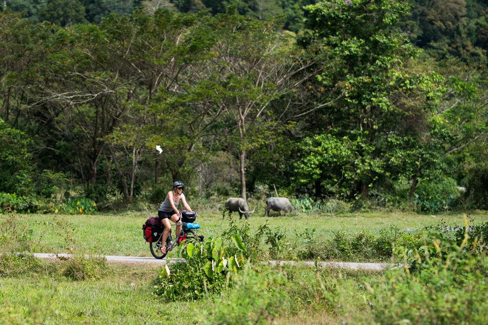Exploring the back roads of Langkawi.