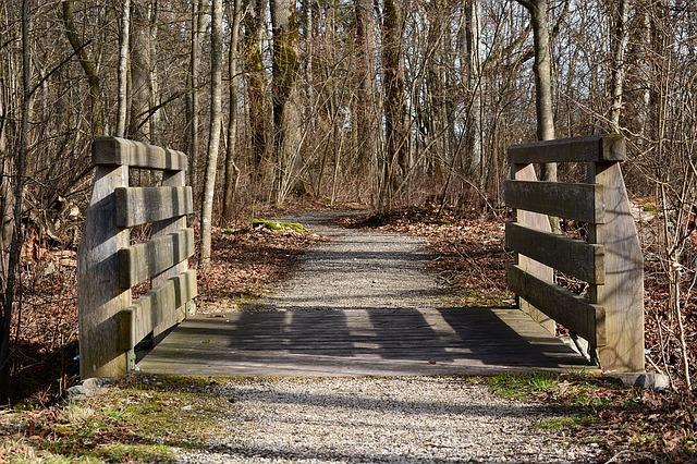 bridge-1184741_640.jpg