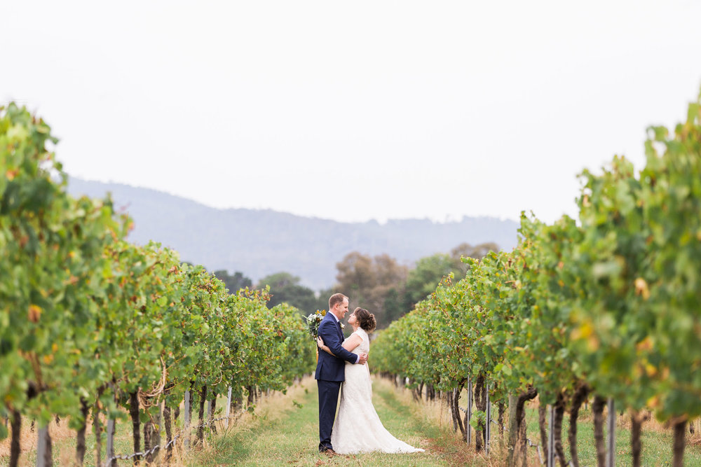Bride and Groom in the Vineyard at Pialligo Estate Canberra