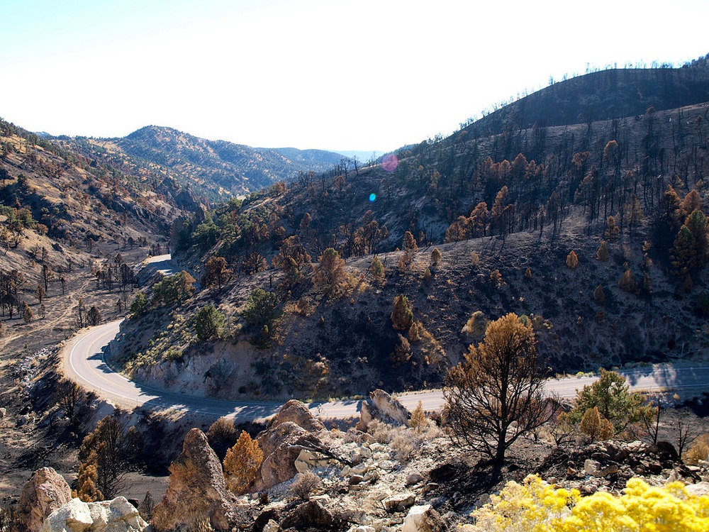 View of the climb up Carroll Summit. You can see the devastation from recent fires, but I still believe it is beautiful. Photo by: Chris Kostman