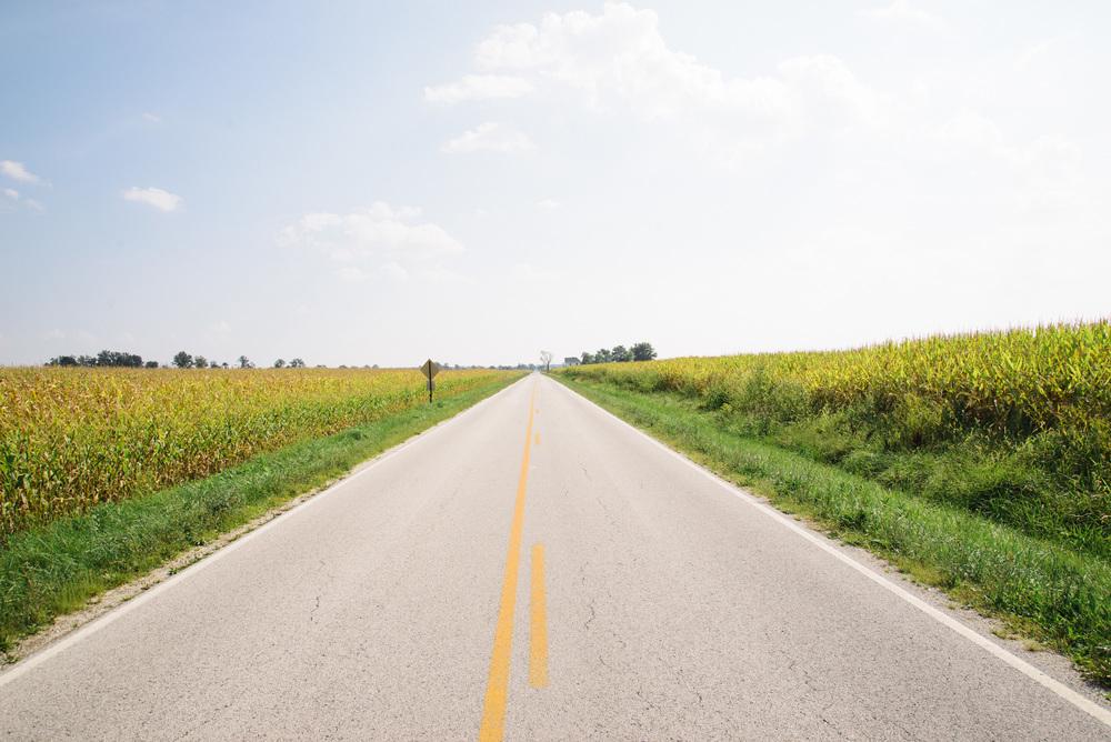 Road through the Corn.jpg