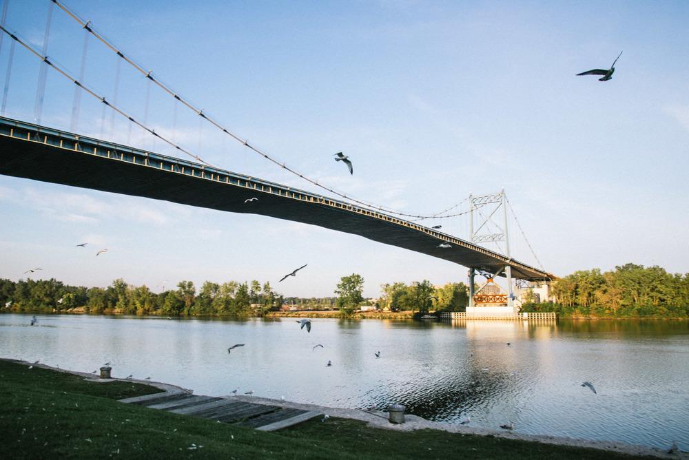 Toledo Bridge Birds.jpg