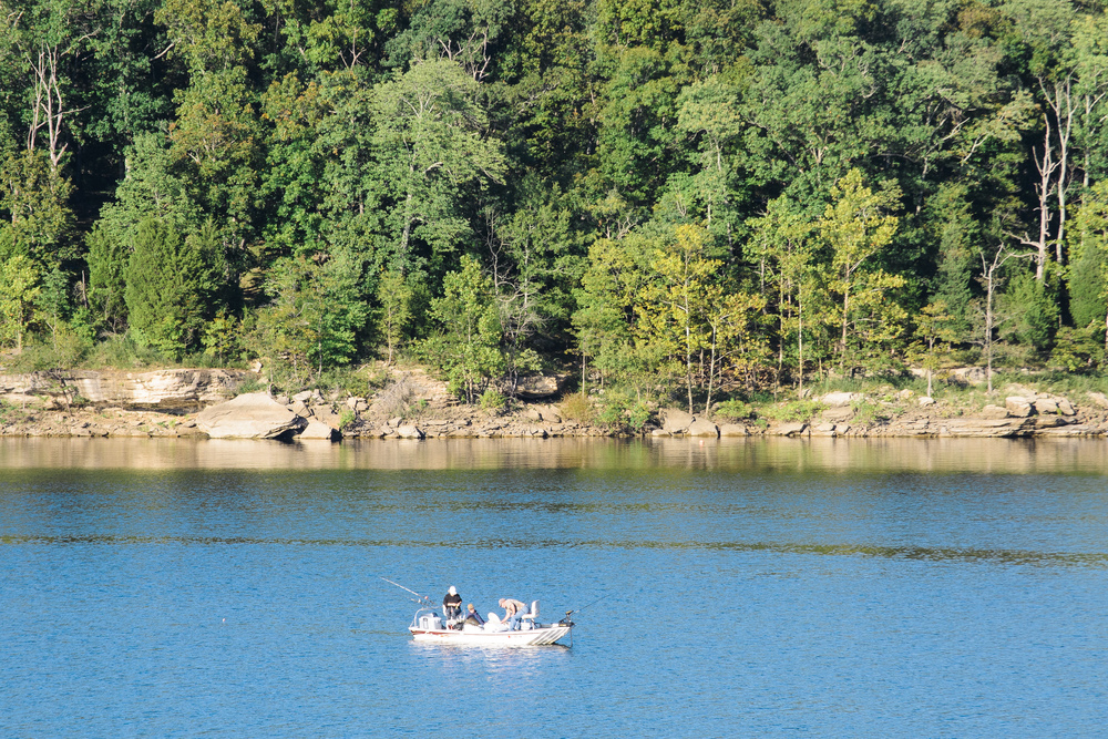 Kentucky Lake 4.jpg