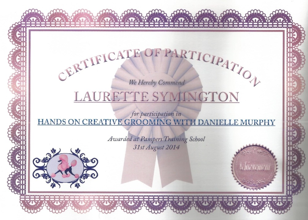 Creative grooming certificate