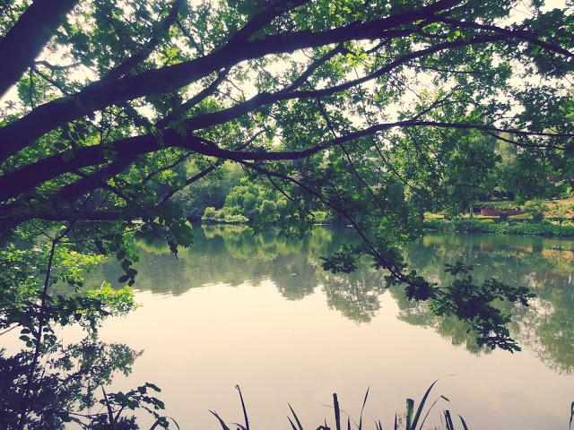 hampstead1.jpg