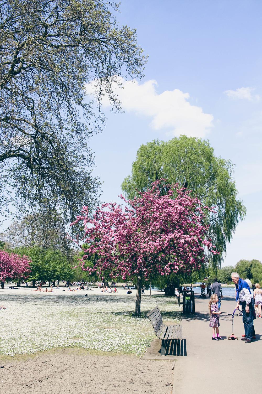 regents_park-22.jpg