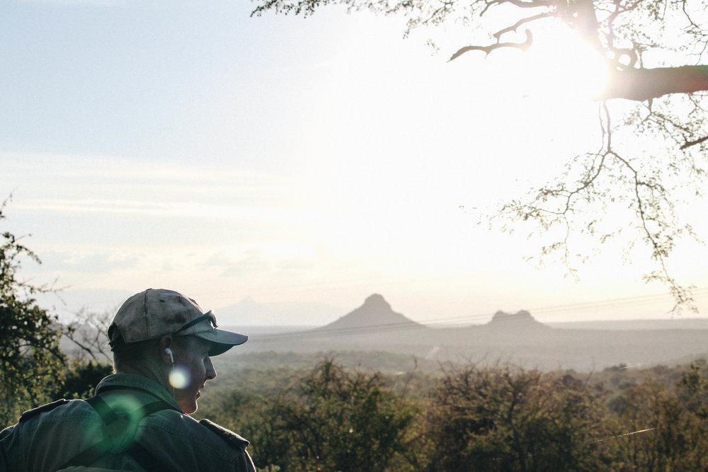 safari-70.jpg