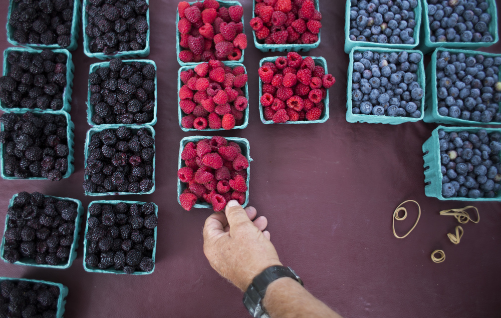 Merle Stutzman, an employee of Sand Hill Berries, sells berries at the Latrobe Farmer's Market held in Legion Keener park on Tuesday, July 7, 2015.