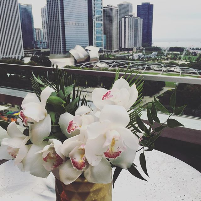 This classic orchid arrangement by @xohellodarling sets the scene for this stunning view of Chicago from the @chicagoathletichotel - We have the best 'offices'!