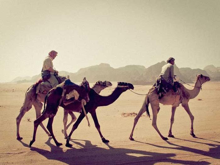 Don-Mirra-Jordan-Wadi-Rum-Desert-e1438714935203.jpg