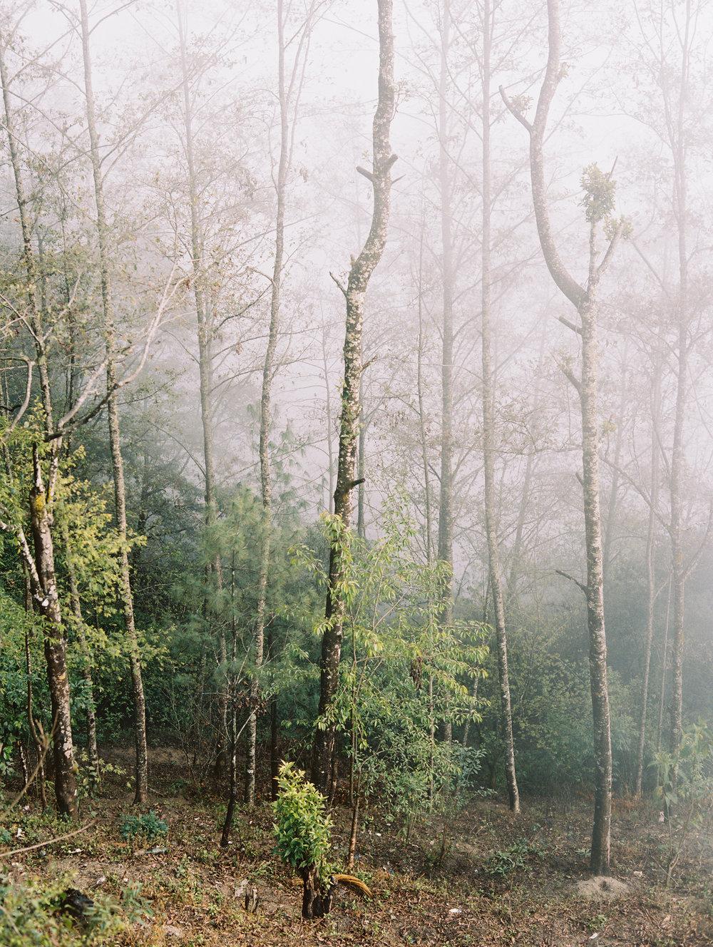 Nina&WesPhotography_MorningRetiscence_020.jpg