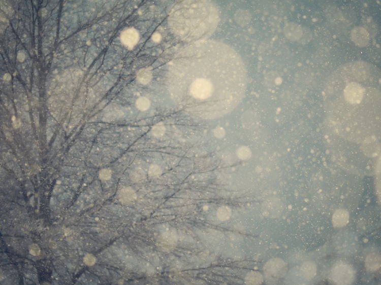 chrysti-hydeck-blue-night-snow-virginia-photography
