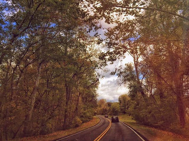 Beautiful day for a drive. Perfect weekend to teach at The Red Thread retreat! #mixedmedia #maryland #visitmd #chasingautumn #roadtrip