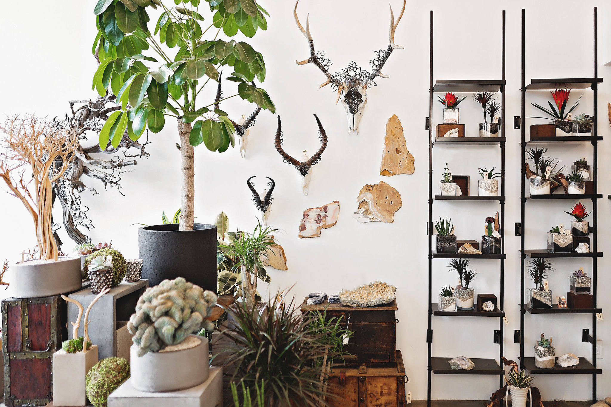 California interior inspiration and boho living. Organic shopping in California. #California #USA #CA
