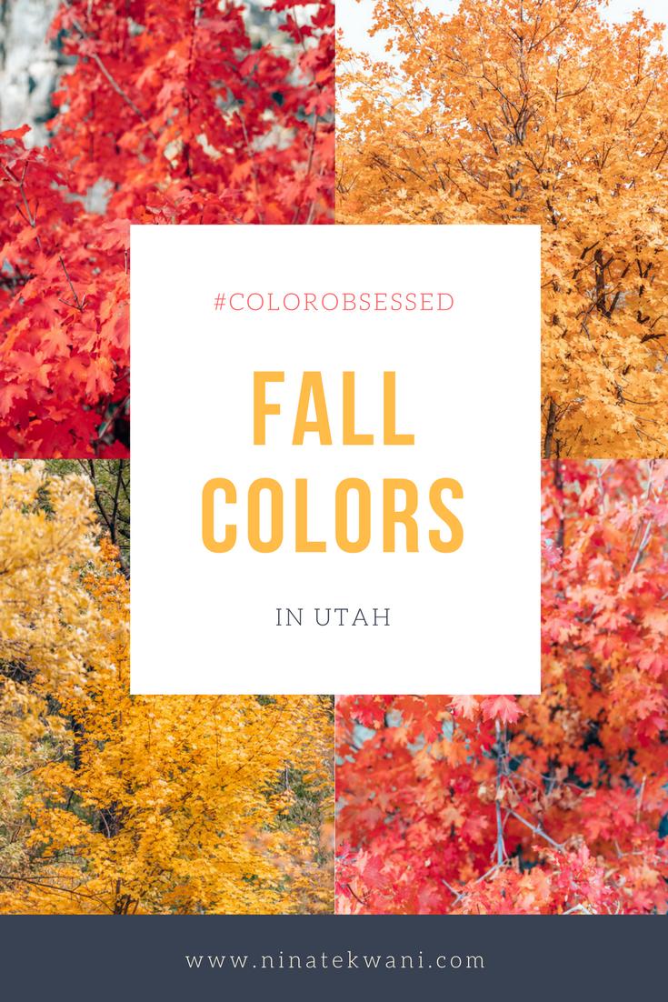 #ColorObsessed on NinaTekwani.com: Fall Colors in Utah