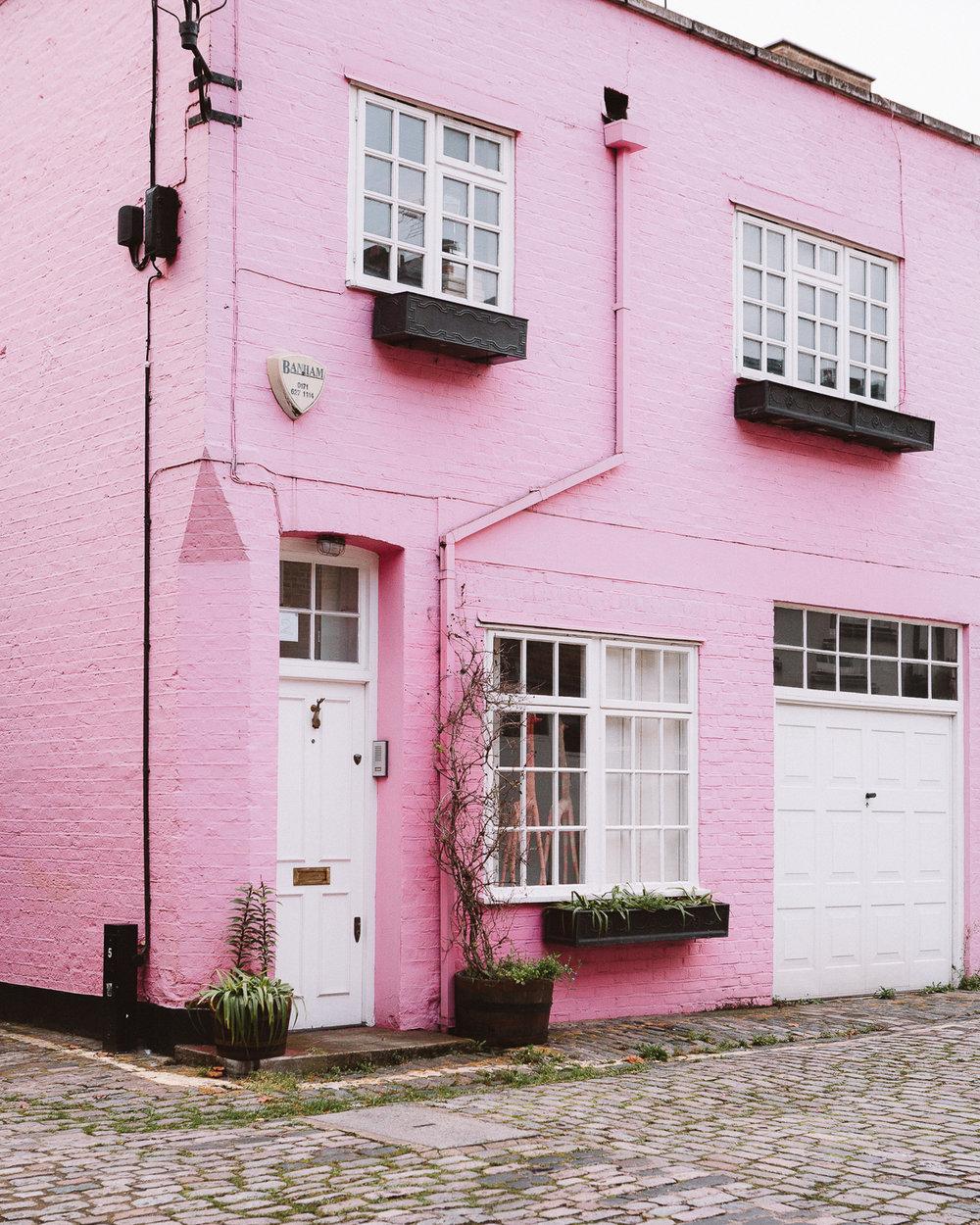 NinaTekwani_London in Pink_6.jpg