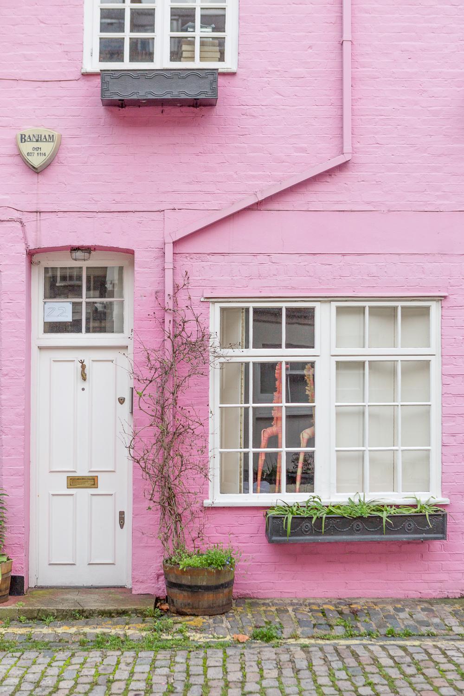 NinaTekwani_London in Pink_8.jpg